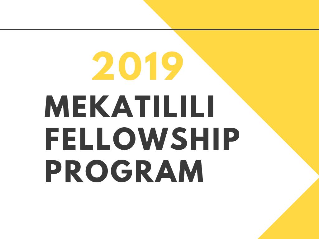Mekatilili Fellowship Program